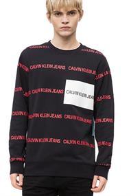 Calvin Klein ALL OVER INSTITUTION