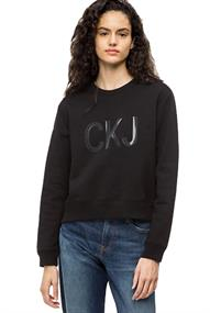 Calvin Klein INSTITUTIONAL VINYL