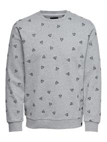 ONLY & SONS onsOPUS AOE CREW NECK SWEAT
